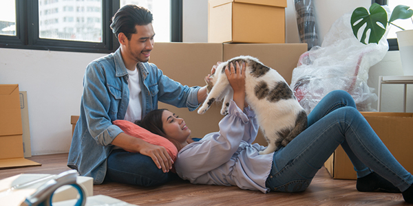 A Guide To Moving With Cats Guardian Self Storage